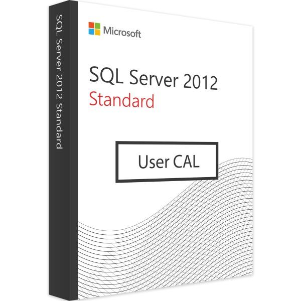 Microsoft SQL Server 2012 Standard - 10 User CALs