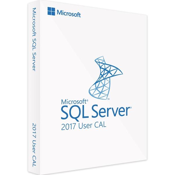 Microsoft SQL Server 2017 Standard - 1 User CAL